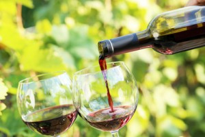 Dégustation vin sur la Costa Brava Espagne